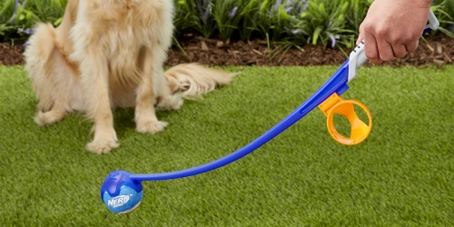 $89 Worth of Nerf Dog Toys Just $23 + FREE Pickup at Petco