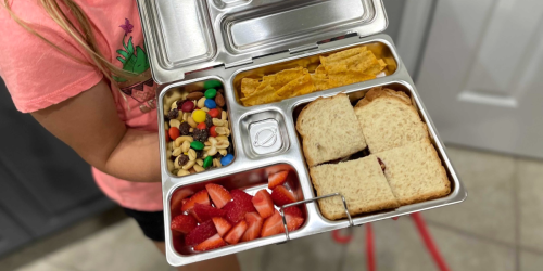 6 Popular Bento Boxes For Perfectly Packed Lunches (Options for All Ages!)