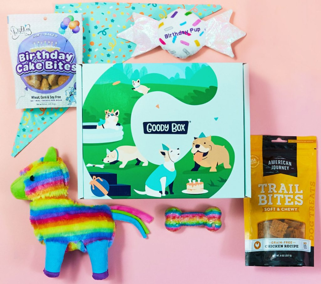 birthday dog goodie box
