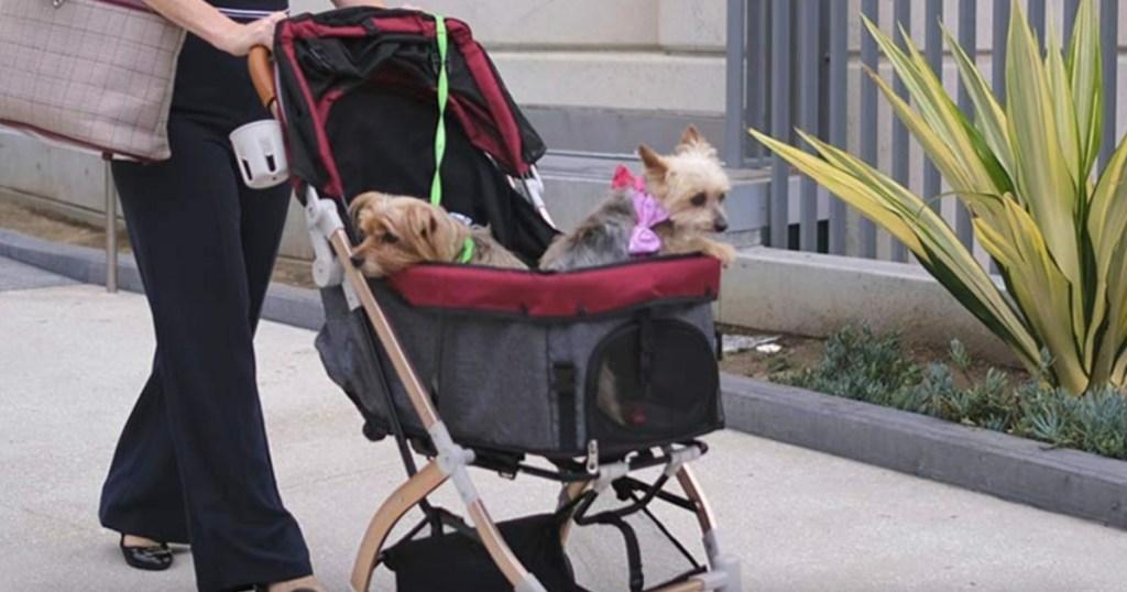 2 dogs in HPZ pet stroller