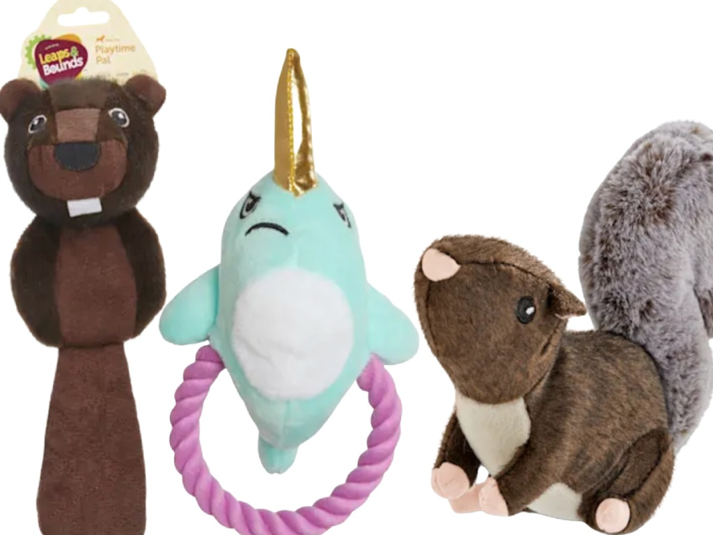 Leaps & Bounds Dog Toys