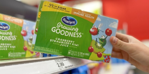 Ocean Spray Juice Boxes 8-Count Only $1.49 at Target | In-Store & Online