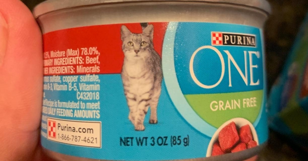purina one grain free beef pate canned cat food