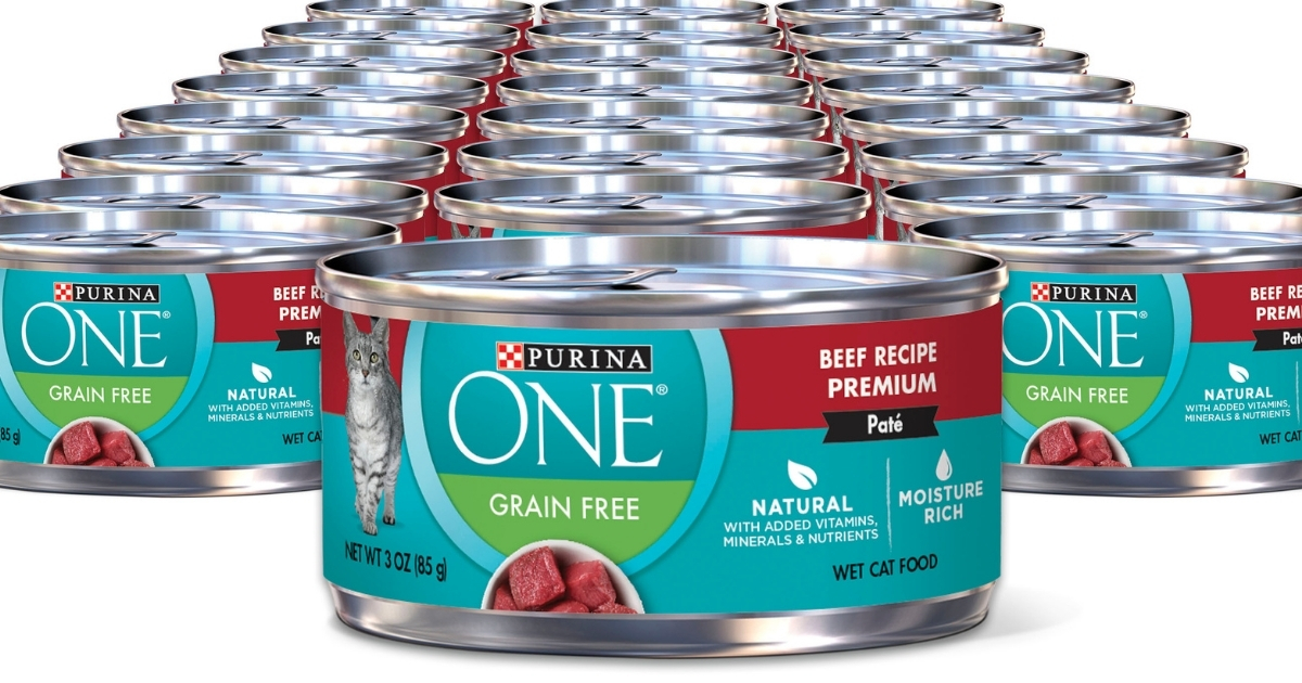 purina one wet cat food beef pate