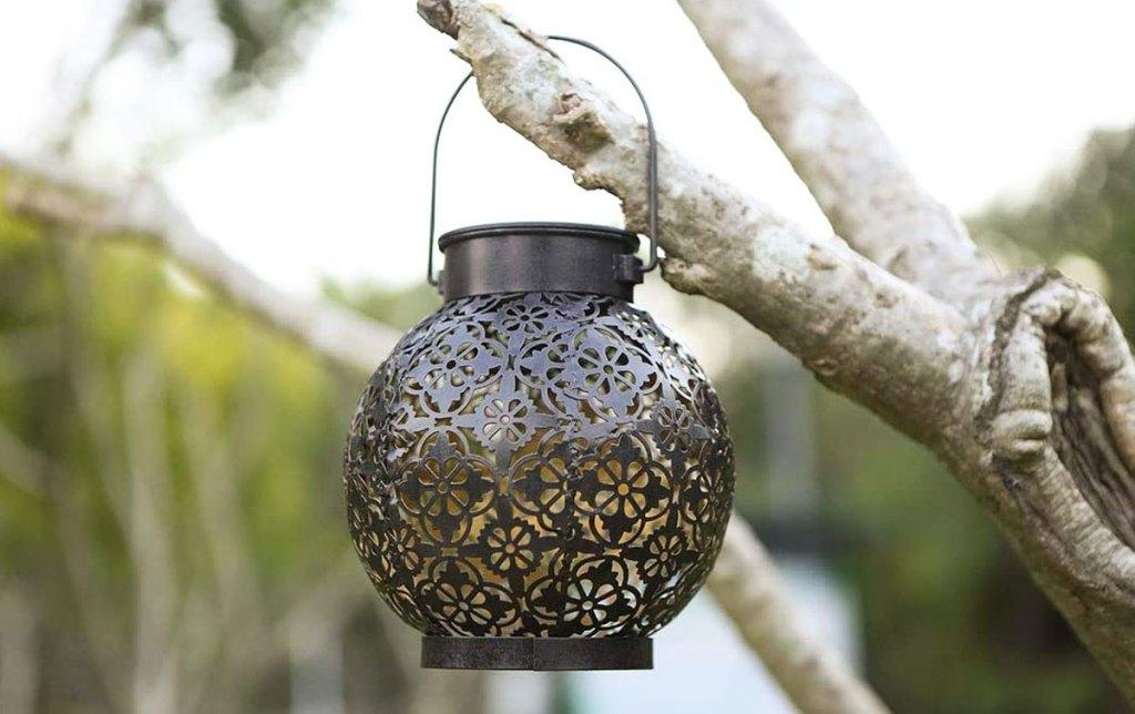 solar lantern hanging from tree branch