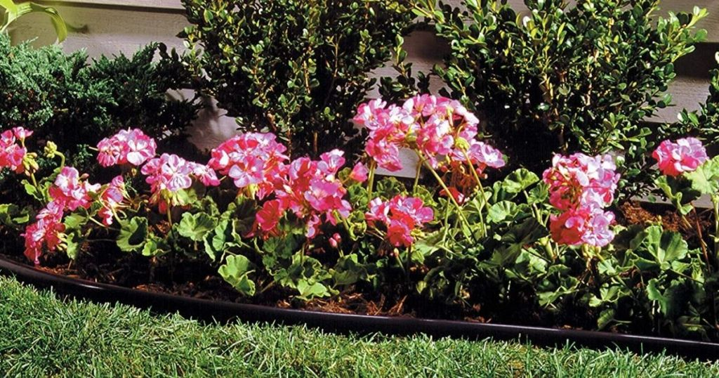 flower bed with black edging
