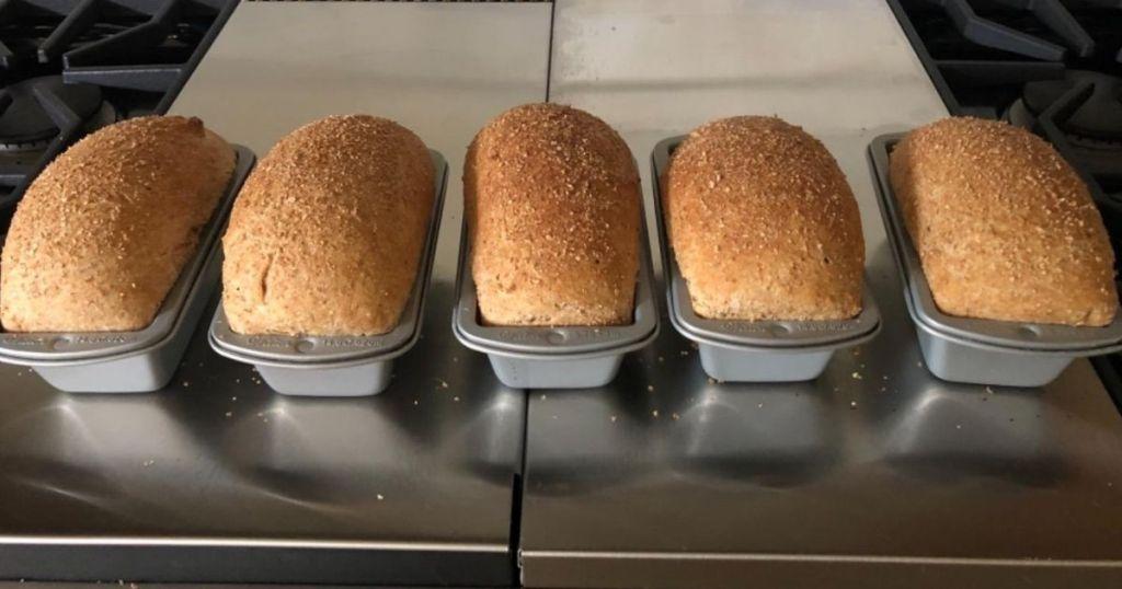 Wilton Mini Baking Loaf Pans