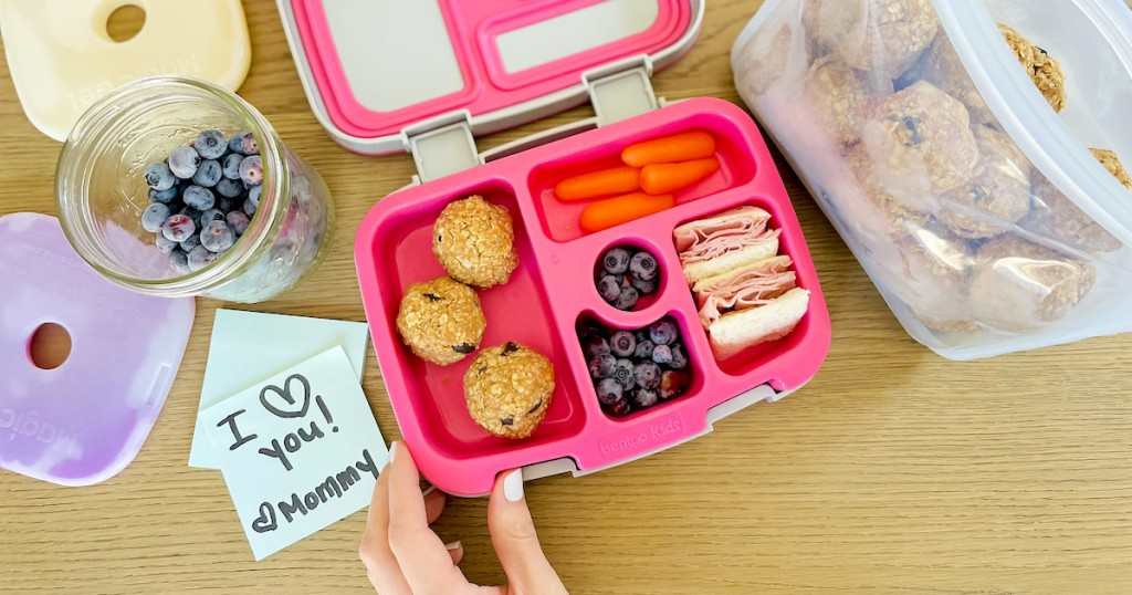 hand holding the corner of a pink and gray bento style lunchbox