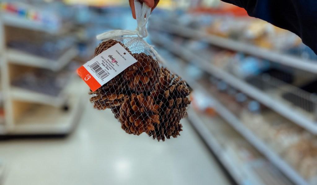 bag of pinecones