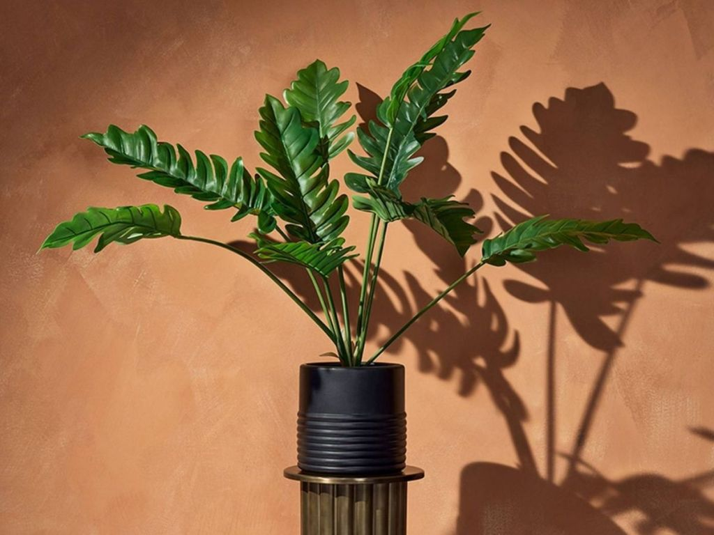 faux plant with orange background