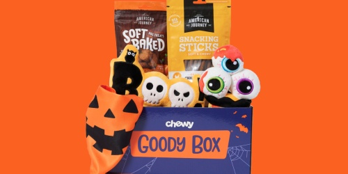 Halloween Goody Box Just $16.41 on Chewy.com (Regularly $33) + Save on More Halloween Pet Toys