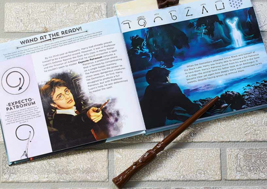 harry potter book + wand