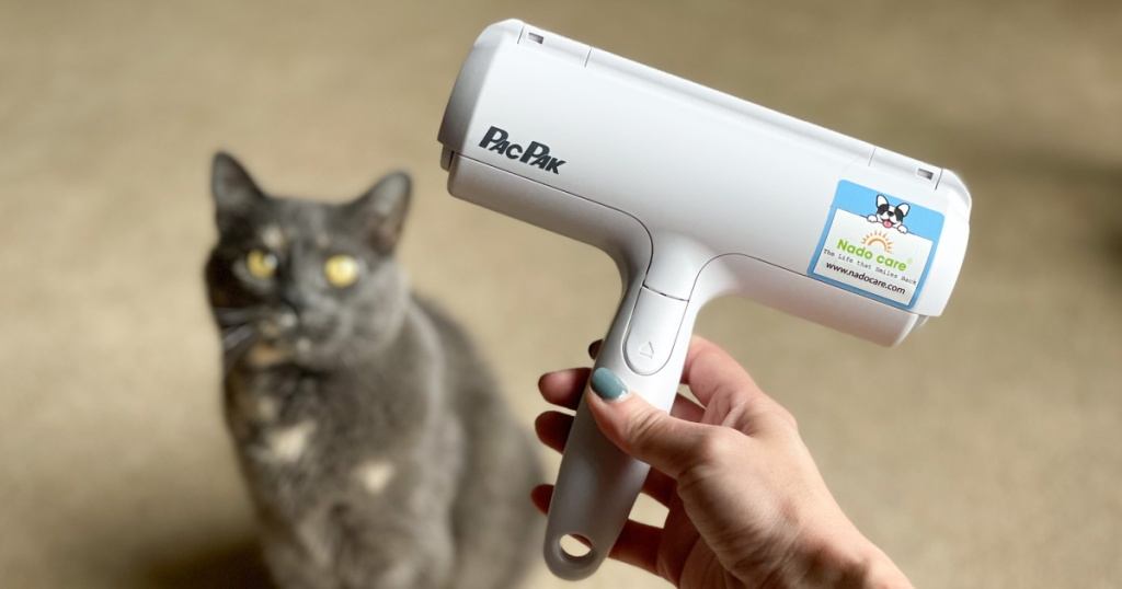 cat with pet hair remover tool