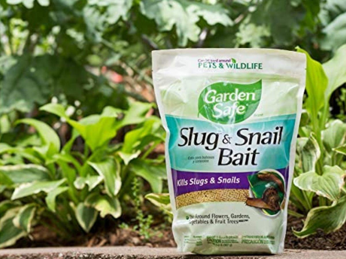 Garden Safe slug and snail bait bag in front of plants