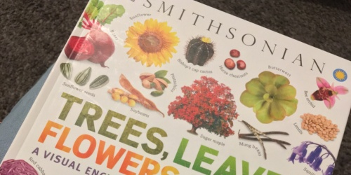 Smithsonian Kindle eBooks Only $1.99 on Amazon