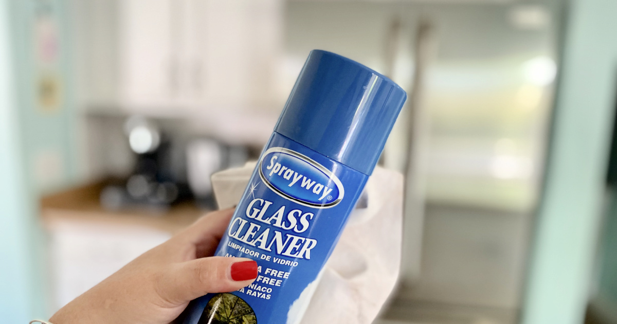 sprayway glass cleaner in front of stainless steel