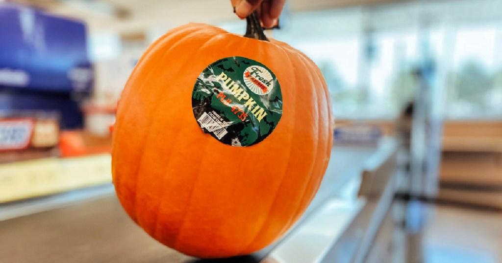 Aldi Pumpkin at Checkout