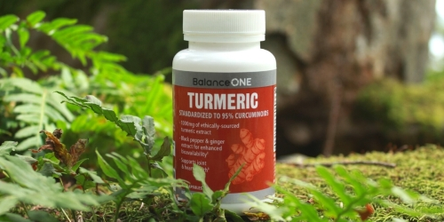Balance ONE Turmeric Extract 30-Day Supply Only $10.78 Shipped on Amazon | Great for Joint Health