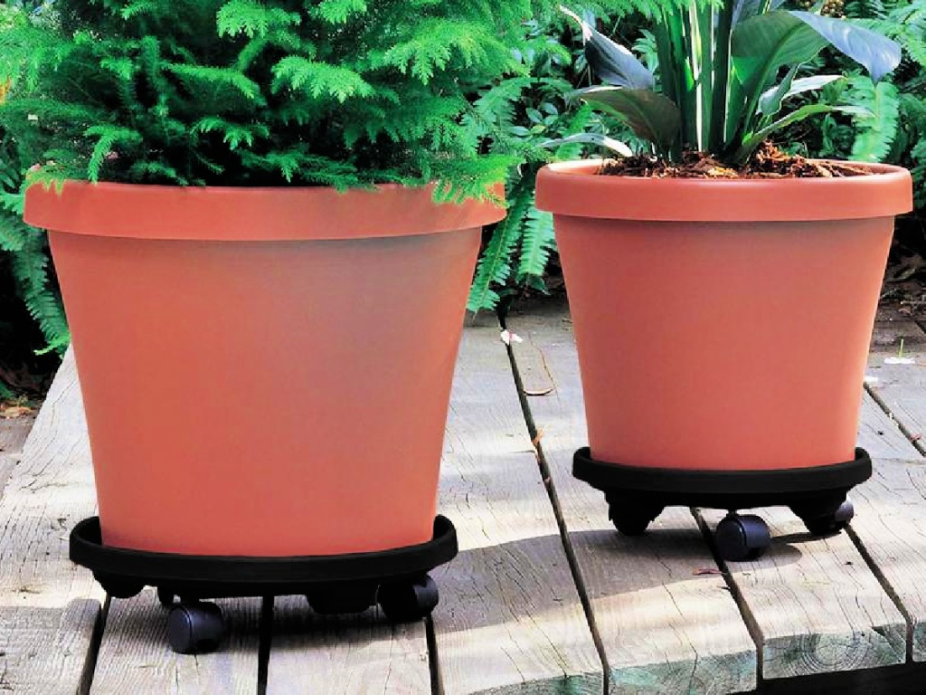 Bloem Caddy Round 14 in. Terra Cotta Plastic Plant Stand Caddy with Wheels in Orange or Black