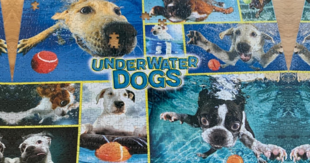 underwater dogs jigsaw puzzle