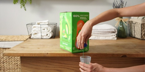 Gain Laundry Detergent Eco-Box Only $8.74 Shipped (Regularly $18) + More Subscribe & Save Household Deals