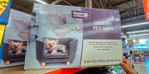 Your Pets Can Relax in Style w/ This Luxury Pet Sofa   Just $49.99 at ALDI
