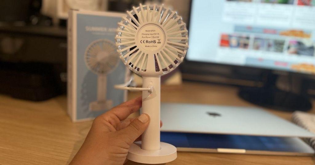 hand holding a fan