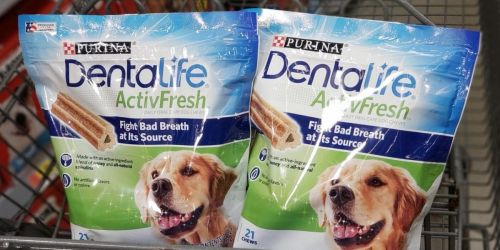 Purina DentaLife Dog Chews 21-Count Only $6.79 Shipped on Amazon (Regularly $17)