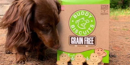 Buddy Biscuits Grain-Free Dog Treats Only $2.37 Shipped on Amazon (Regularly $5)