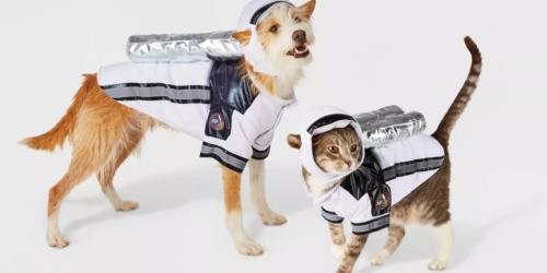 Go! 40% Off Pet Halloween Costumes & Accessories at Target | In-Store & Online