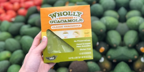 Wholly Guacamole 6-Month Subscription Box Only $39 ($150 Worth of Products)