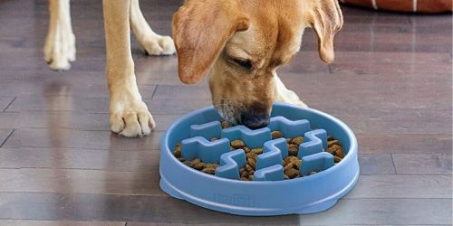 Outward Hound Fun Feeder Dog Bowl Only $4.61 on Amazon (Regularly $20) | Prevents Bloat & Indigestion