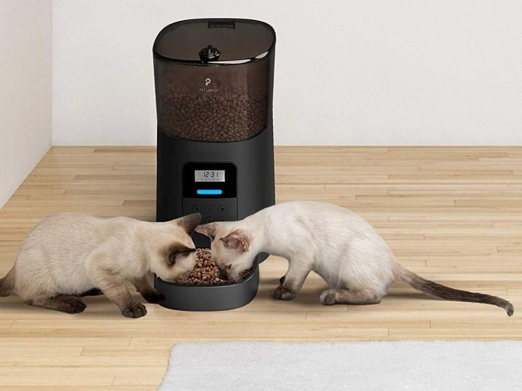 two cats eating from black pet feeder
