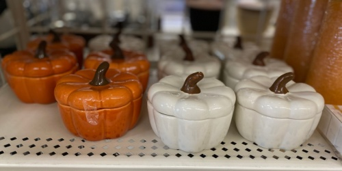 40% Off All Fall Decor at Michaels   Wreaths, Candles, & String Lights Starting at $5.99!