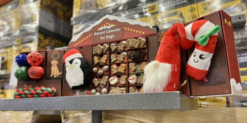 Advent Calendar for Dogs Just $35.99 at Costco | Includes 8 Toys & 16 Bags of Treats