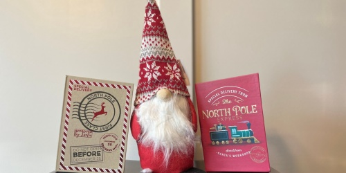Dollar Tree Christmas Items Are Already Available! We Found $1 Gnomes, Tinsel Trees, & More