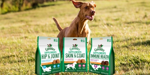 Greenies Soft Chew Dog Supplements 80-Count Bags from $9.74 on Chewy.com (Regularly $38)