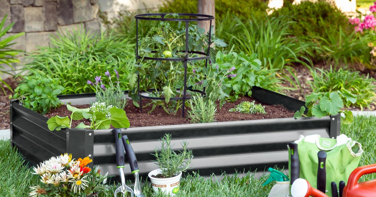 Raised garden bed with plants in it and gardening supplies all around