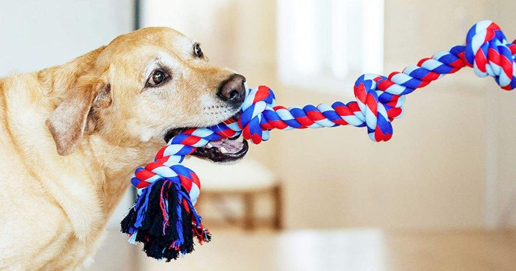 Outward Hound Line Dog Toy Lone $5.62 Shipped On Amazon (regularly $10)