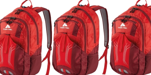 Ozark Trail Stillwater Hydration Backpack Only $9.98 on Walmart.com (Regularly $20)