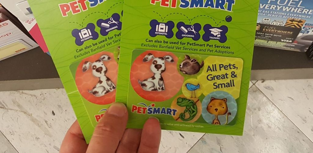 hand holding two Petsmart Gift Cards