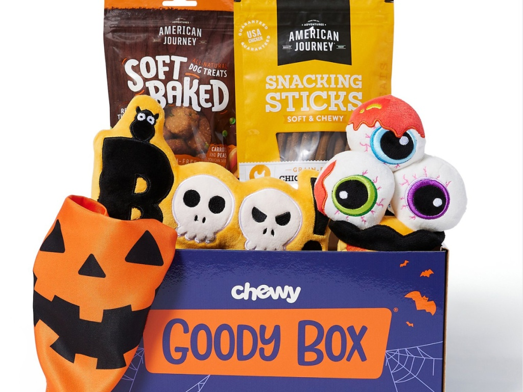 box filled with dog treats and plush toys