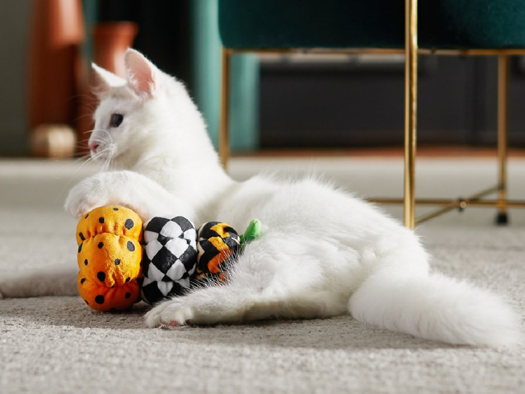 cat laying on floor with plush toy